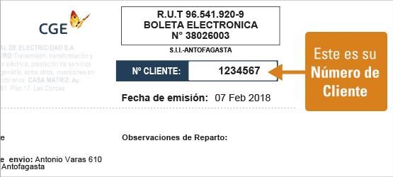 Nueva-Boleta